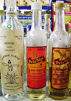 Visit La Lonja, to try these fine Young  Mescals to  aged (Anejo) Mescals!  just click the photo!